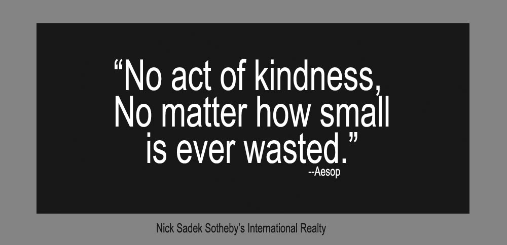 "Quote ""No act of kindness, no matter how small is ever wasted."" - Aesop"