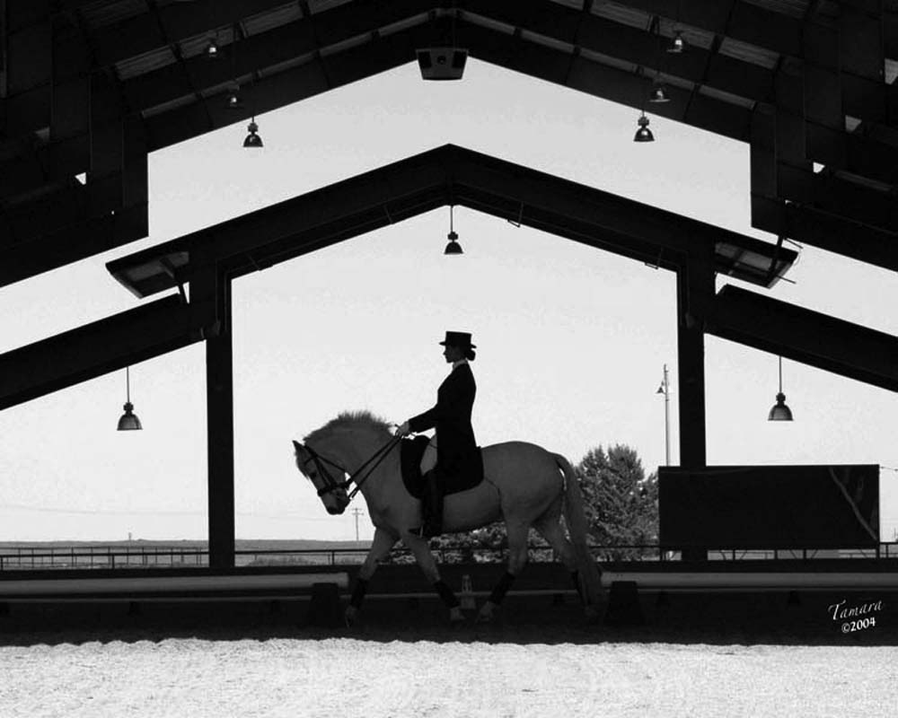 Equestrian show at Starr Vaugn equestrian center in Sacramento under the cover patio