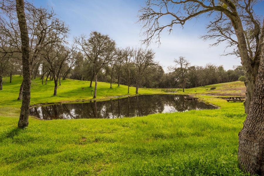 Lincoln, CA Estate includes pond, oaks and rolling hills
